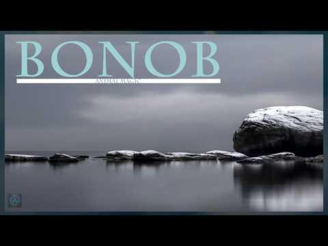 Bonobo - Animal Magic  (Full Album)