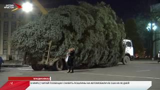 Главную ёлку Северной Осетии привезли во Владикавказ