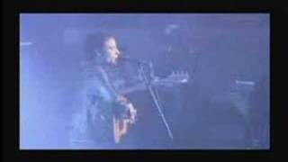 "The Wallflowers ""Letters from the Wasteland"" 2003 (Clip)"