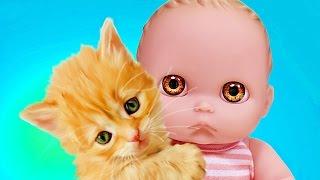 Куклы Пупсики завели питомцев: Мама купила кошечек и собачку Sweet Box/Игрушки для девочек/Зырики ТВ