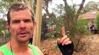 How Durianrider Celebrated New Years Day (I won 2 running races today!)