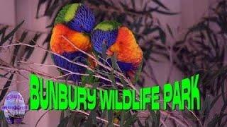 Bunbury Wildlife Park - Western Australia thumbnail