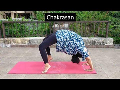 surya namaskar  yoga postures  youtube