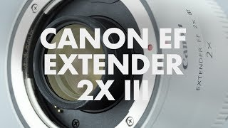 Lens Data - Canon EF Extender 2X III Review