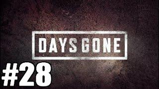 Days Gone gameplay #28 acabando com a horda (PT-BR)