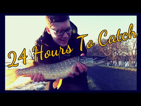 24 Hours To Catch! Pike fishing challenge on the union canal.