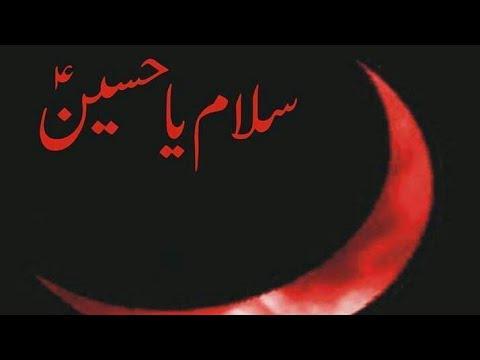 salam-ya-hussain-|-whatsapp-status-|-noha-2018-|