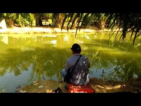 Mancing Dapat Ikan Banyak.. GALATAMA