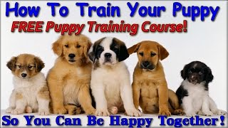 ▶▶▶ How To Train Your Puppy ★★ Instant Download ★★ Free Puppy Training Course :)))))))
