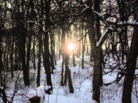 Vangelis-Antarctica-Deliverance