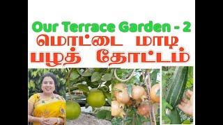 மொட்டை மாடி பழத்தோட்டம் /Our Terrace Garden - 2 / அனிதா குப்புசாமி / Anitha Kuppusamy