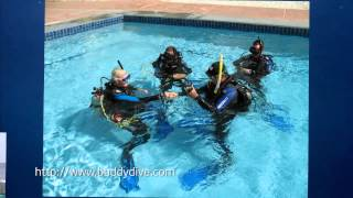 Kids Sea Camp and Buddy Dive