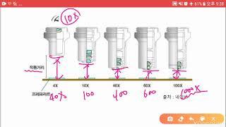 광학현미경의 원리(확대율과 분해능)