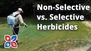 Do My Own Lawn Care - Non-selective v Selective Herbicides