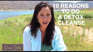 10 Reasons to do a 10 day Detox- Diana Stobo