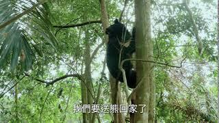 《黑熊來了》電影10秒短版預告|12/13 尋找山的靈魂