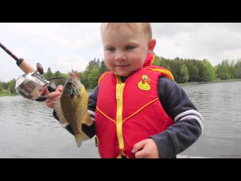 Little Boy Fishing Funny