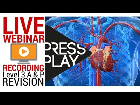 [84 mins Webinar Recording] Level 3 Anatomy and Physiology - How to Pass First Time