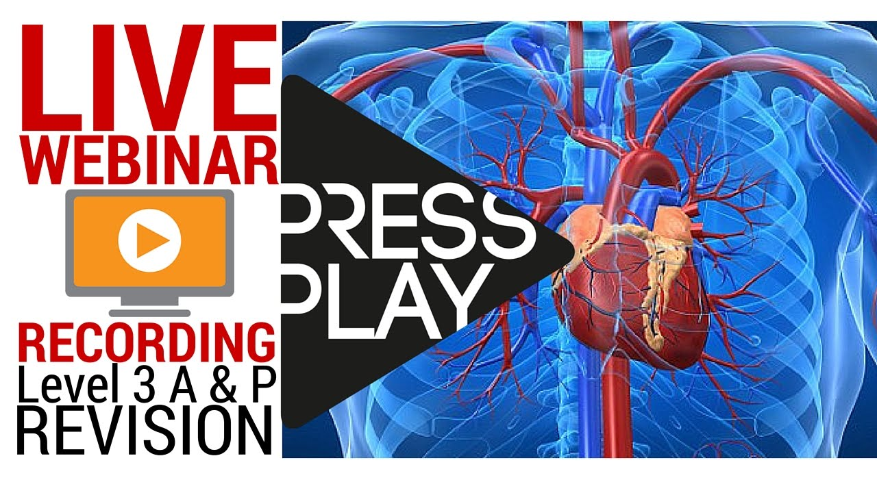 84 mins Webinar Recording] Level 3 Anatomy and Physiology - How to ...