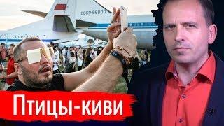 Птицы киви. Константин Сёмин  Агитпроп 06.07.2019