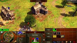 Age of Empires 3 - French VS Russia Late Game