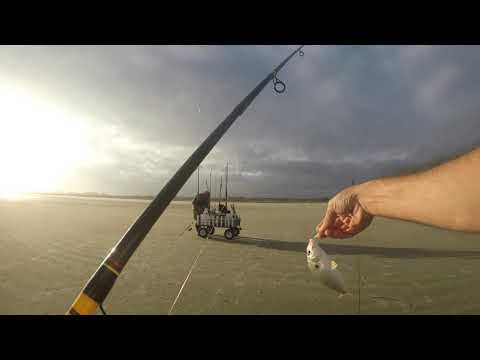 Fall Fishing At Seabrook Island S.C.