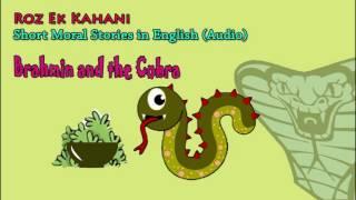 Brahmin and the Cobra