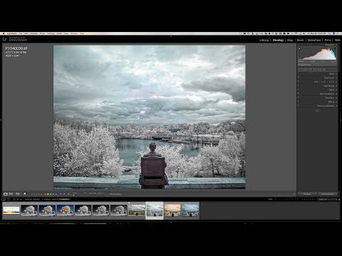 Getting Started In Infrared Photography