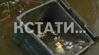 Утки, крысы и мусорные баки - река Левинка превратилась в отхожее место