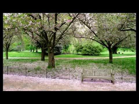 Hyde Park | Visit Australia | Travel to Australia