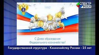 Государственной структуре - Казначейству России - 25 лет