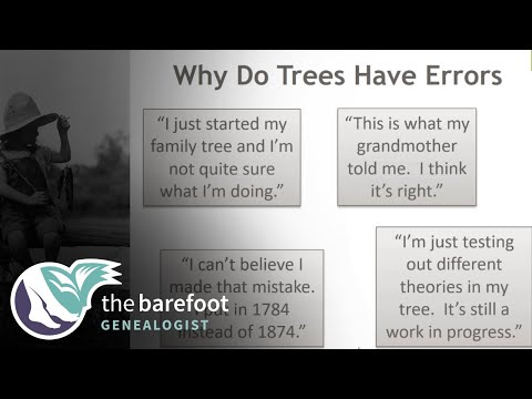 Dealing With Errors in Online Family Trees
