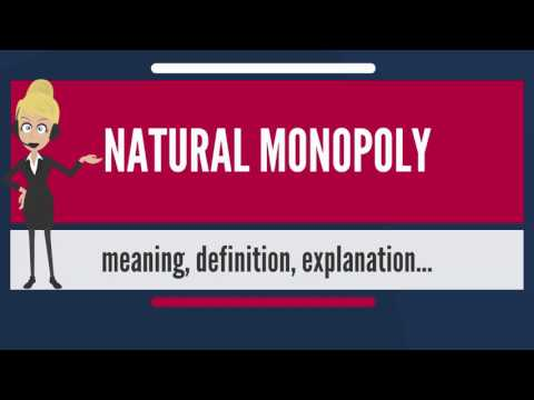 What is NATURAL MONOPOLY? What does NATURAL MONOPOLY mean? NATURAL MONOPOLY meaning & explanation