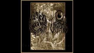 Death Vomit / Uttertomb - Coagulation of Pest (Full Split)
