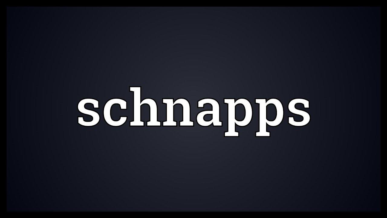 Schnaps Definition