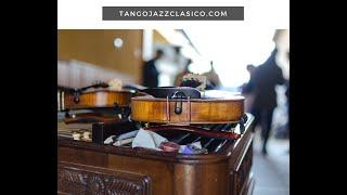 Cuales con las Diferencias entre un violin y una Viola? Clases Online, Musica