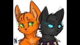 """Коты воители """"день, ночь"""""""