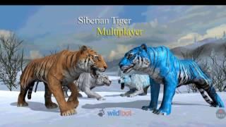 Siberian tiger multiplayer ( simulator)