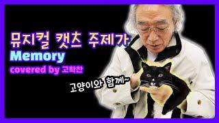 (고양이와 함께) 뮤지컬 캣츠 주제가 메모리