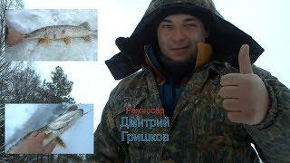 Димкин Вир - 2 (р. Болва) 15.01.2019 рр