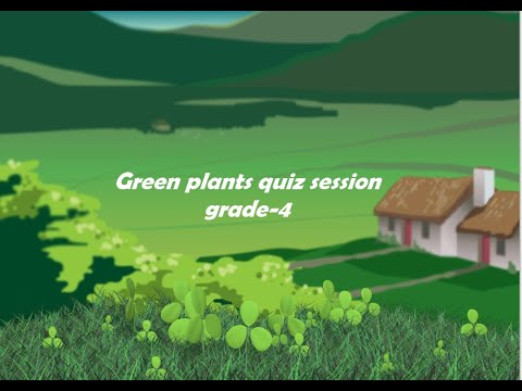Class IV green plants science questions & solutions