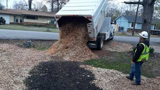 Using mulch to dry up wet muddy areas in a yard