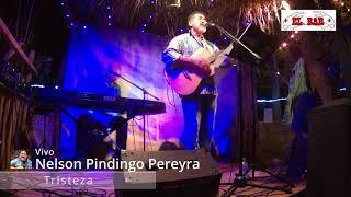 Tristeza - Nelson Pindingo Pereyra 🧉folklore uruguayo