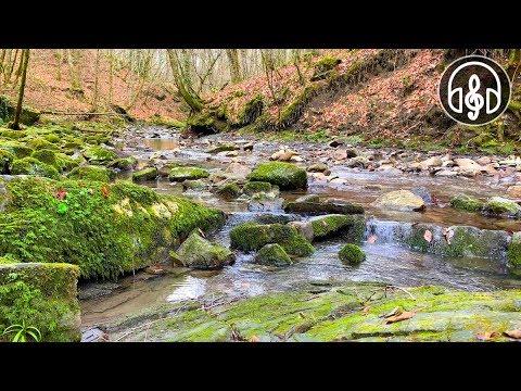 Нежный Звук Горной Реки. 12 Часов Для Глубокого Сна, Учебы и Отдыха!