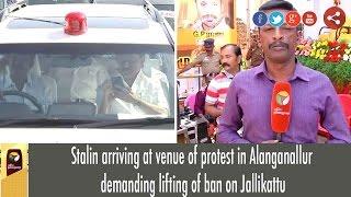 Stalin arriving at venue of protest in Alanganallur demanding lifting of ban on Jallikattu