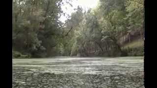 Stoner Creek Journey - Stone Bridge At Xalapa Farm