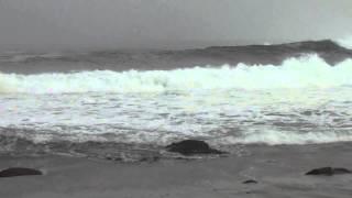 Isla Cachagua - on the beach