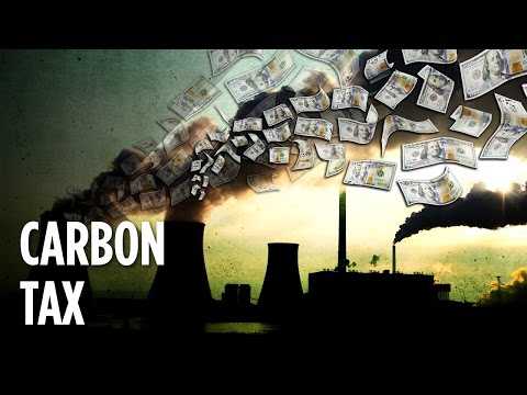 Does A Tax On Pollution Actually Work?