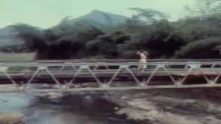 Thamarakkili Paadunnu | Moonnam Pakkam | Malayalam Film Song