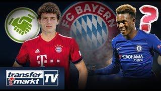 Bayern: Pavard-Transfer bestätigt - Hudson-Odoi im Anflug? | TRANSFERMARKT